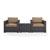Set w/ Mocha Cushions - 2 Chairs & Coffee Table View 1
