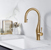 Brushed Brass Vision Pull Down Faucet
