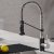 Stainless Steel / Matte Black Faucet