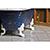 New Square Cast Iron Clawfoot Bathtub Trompe L'Oeil Antiqued Lagniappe Freestanding Claw Tub Package, Degas Blue