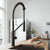 Matte Black Faucet - Illustration 1