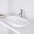 """Vigo Wisteria Matte Stone Vessel Bathroom Sink in Matte White, 23"""" W x 13-5/8"""" D x 4"""" H"""