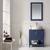 Vinnova Bathroom Vanity Lifestyle View Front Blue